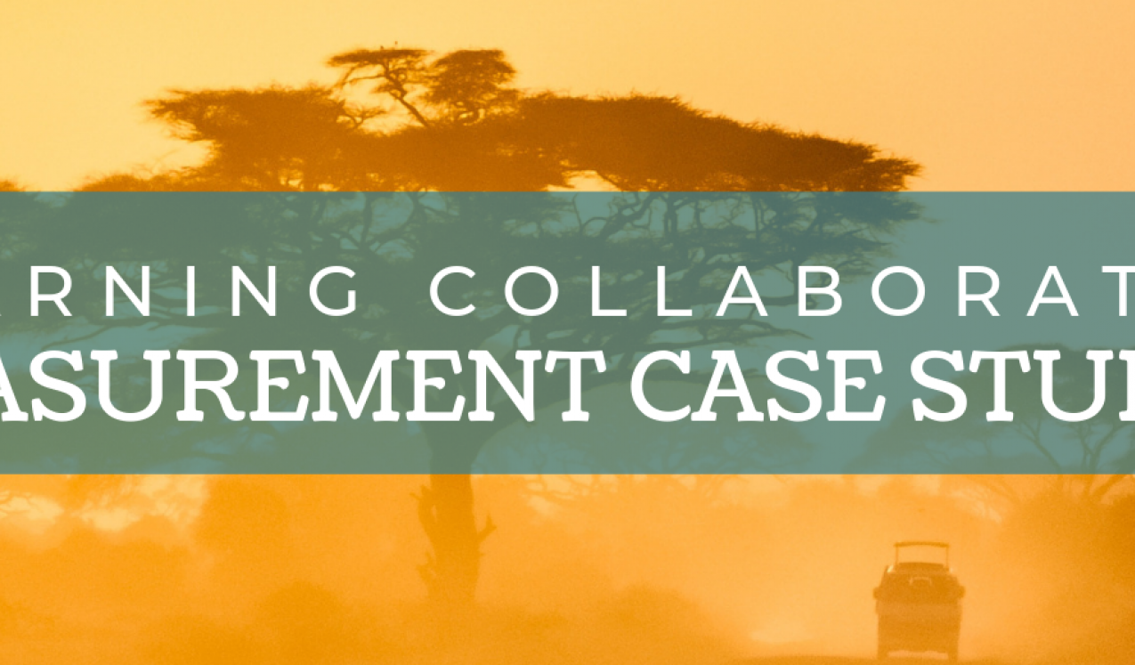 Learning Collaborative Measurement Project Summaries