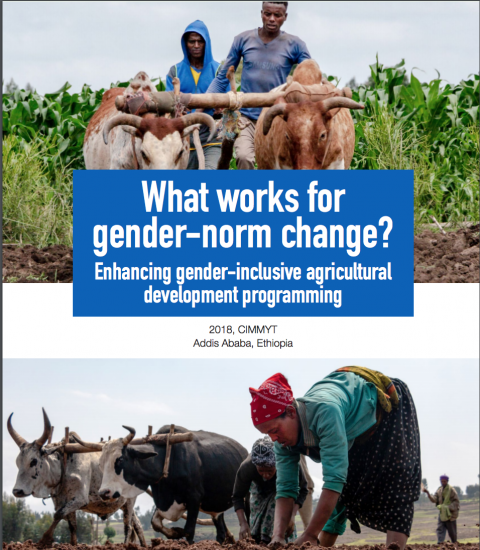 What works for gender norm change cover