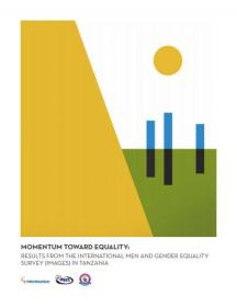 Momentum report cover