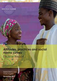 Cover of the Itad report on social norms