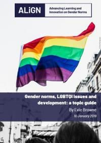 LGBTQI+ and norms guide cover featuring a rainbow flag.