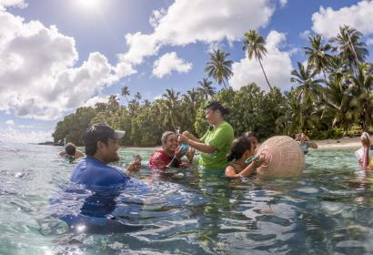 Coral planting in Fiji  © Will Seal
